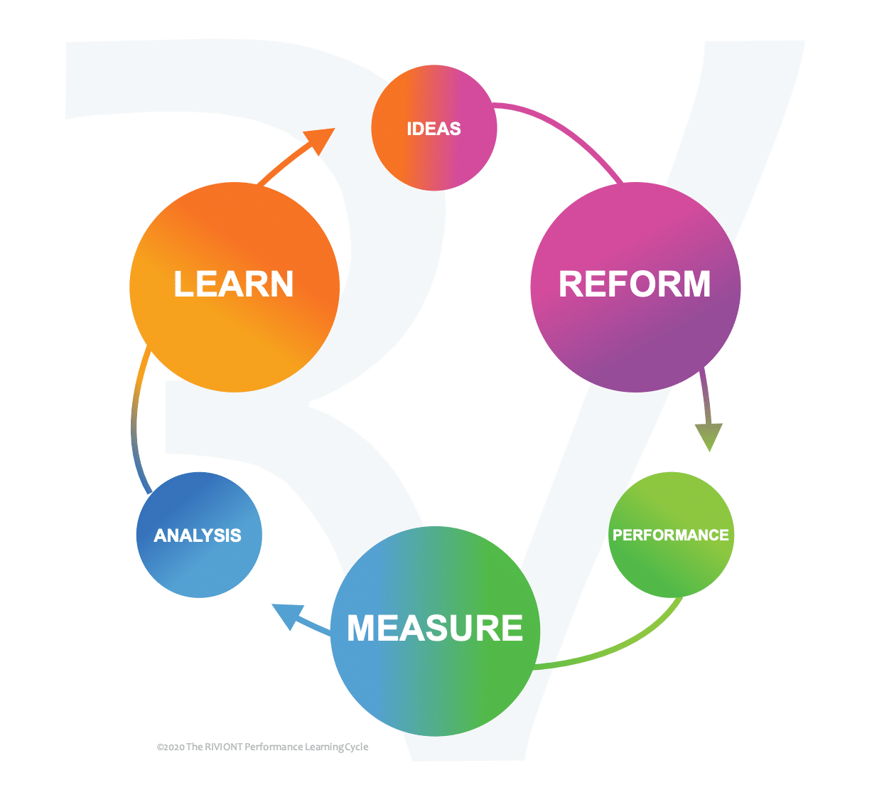 The RIVIONT Performance Learning Cycle